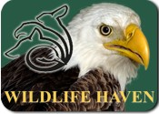 Wildlife Haven