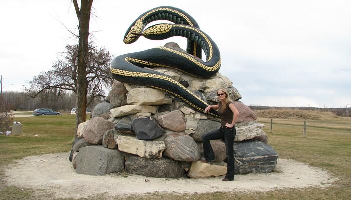 Narcisse Snake Dens Update Page